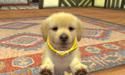 Can Dogs On Nintendogs And Cats Have Puppies